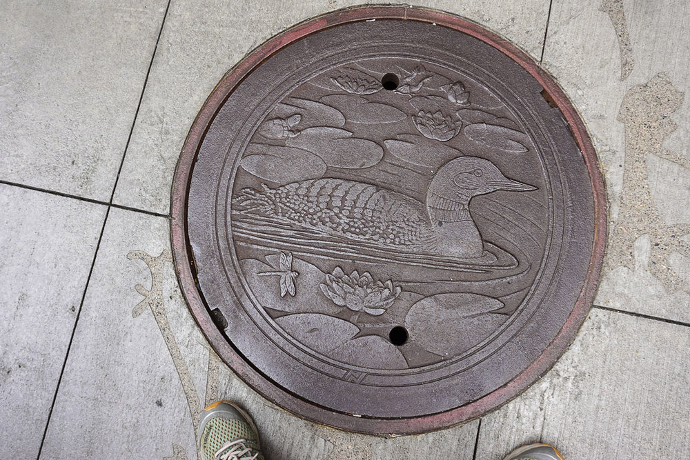 © 2018 Louise Levergneux. The Loon, manhole cover on Nicollet Mall, designed by Kate Burke.