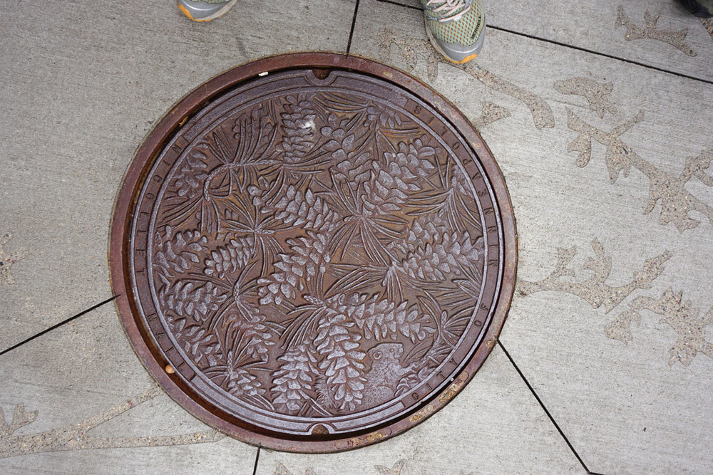 © 2018 Louise Levergneux. Norway Pine, manhole cover on Nicollet Mall, designed by Kate Burke.