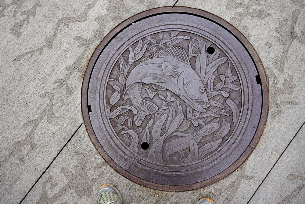© 2018 Louise Levergneux. The Walleye, manhole cover on Nicollet Mall, designed by Kate Burke.