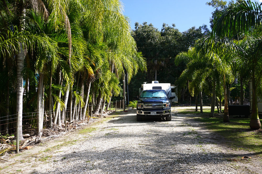 © 2019 Louise Levergneux. Here we are between all the palm trees in Bokeelia, Pine Island. /  Nous voilà parmi les palmiers à Bokeelia, Pine Island !