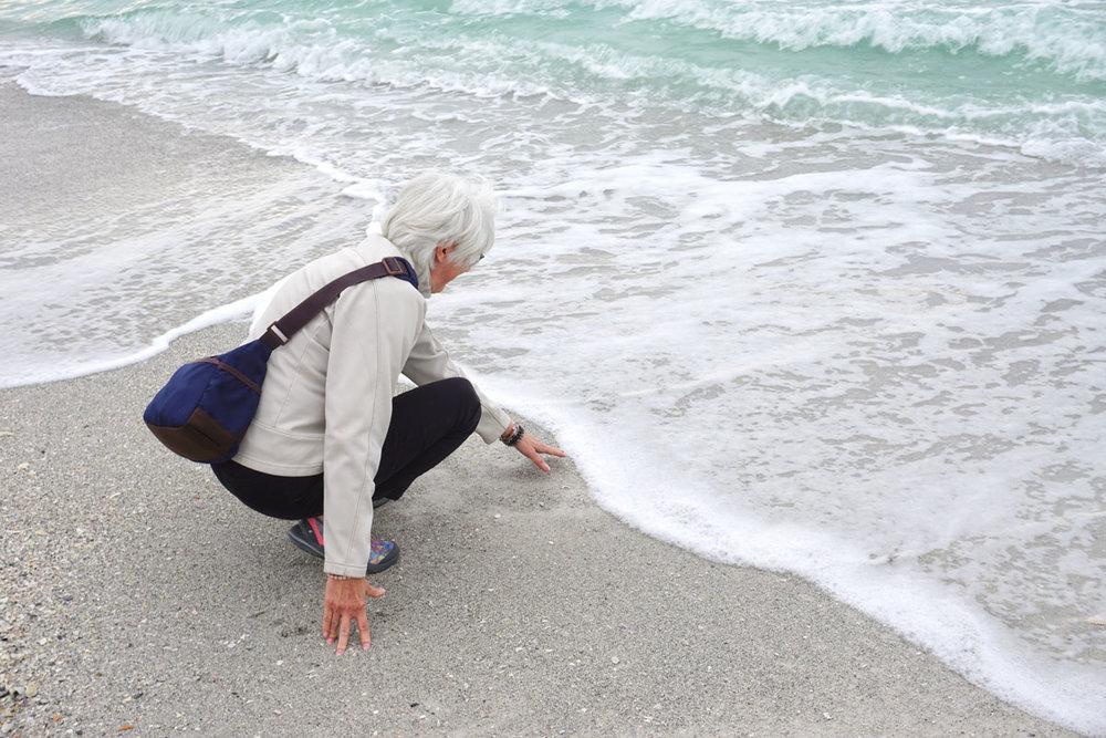 © 2019 Michael Sutton. Impressed with Coquina Beach, finally touching the Gulf of Mexico. /  Impressionné par la plage de Coquina, finalement je touche le golfe du Mexique.