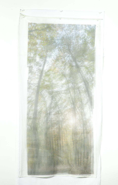 Reese-FabricStudies-14.jpg