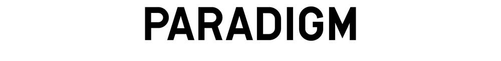 Paradigm-09.png
