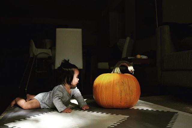 Last day of October. Happy Halloween 🎃 👻 everyone! // . . . . . . // #28weeks #kirasirinda #subjectlight #vsco #vscocam #makeportraits #theoutbound #goexplore #exploremore #liveauthentic #livefolks #loveauthentic #wanderlust #westcoast #peoplescreative #visualsoflife #exploretocreate #justgoshoot #passionpassport #welltraveled #letsgosomewhere #babyofinstagram #travelersnotebook #littleadventurer #littleexplorer #halloween #pumpkin