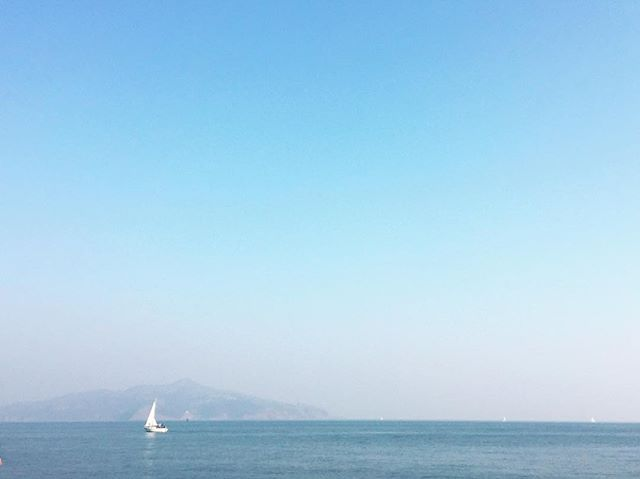 a bit hazy but still very pretty // sausalito // . . . . . . . #sausalito #vitaminsea #localwanderer #vsco #vscocam #makeportraits #theoutbound #goexplore #exploremore #liveauthentic #livefolks #loveauthentic #wanderlust #westcoast #peoplescreative #visualsoflife #exploretocreate #justgoshoot #passionpassport #welltraveled #letsgosomewhere #california #weekendvibes #travelersnotebook #sea