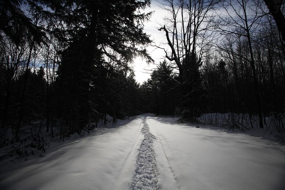 1231_snowshoeing_TG_0149.jpg