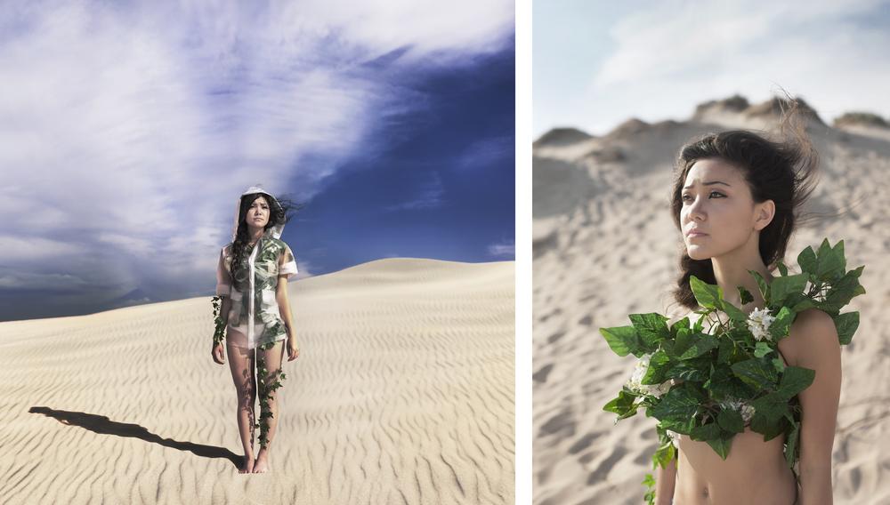 _Dunes Album Cover b&a.jpg