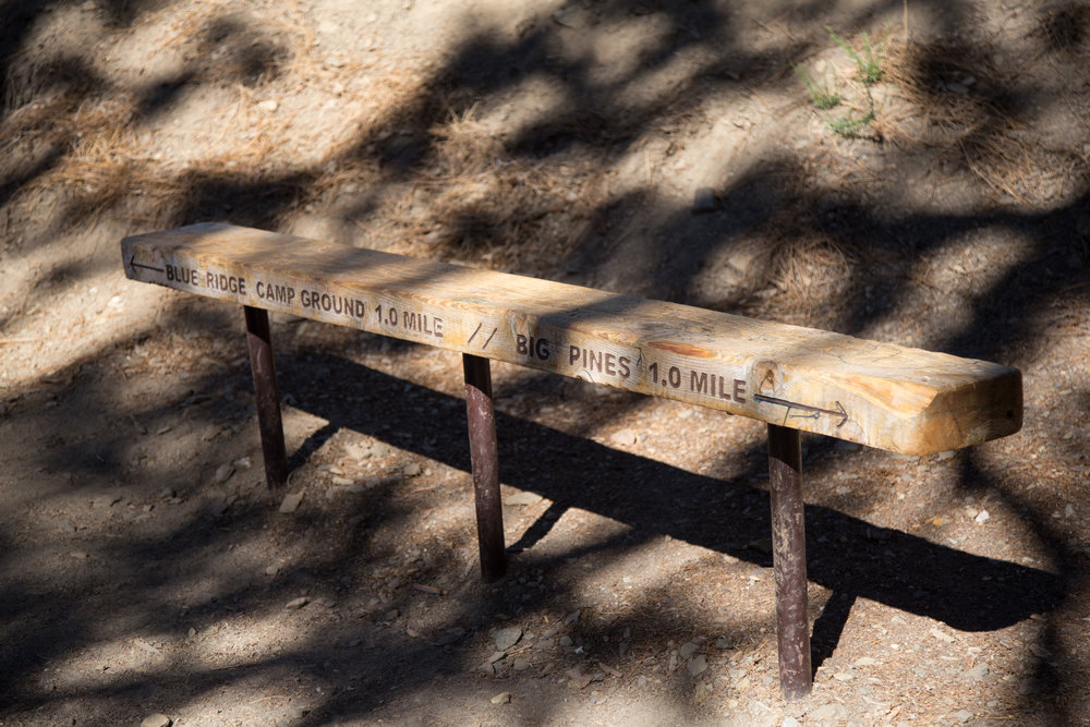 This bench marks the half-way point from the beginning of the trail head to the Blue Ridge Campground.
