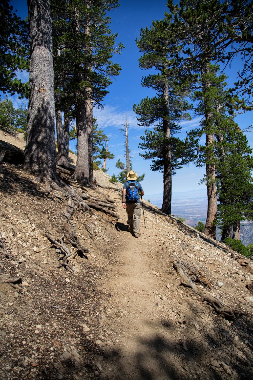 My husband walking up the trail.