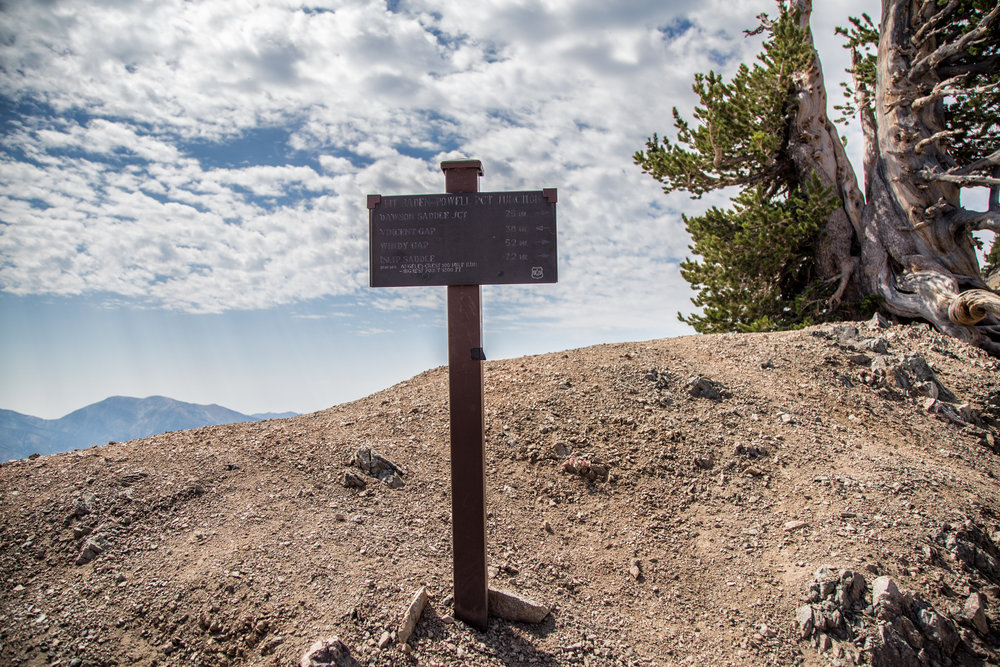 Sign at the Mt. Baden Powell PCT junction.