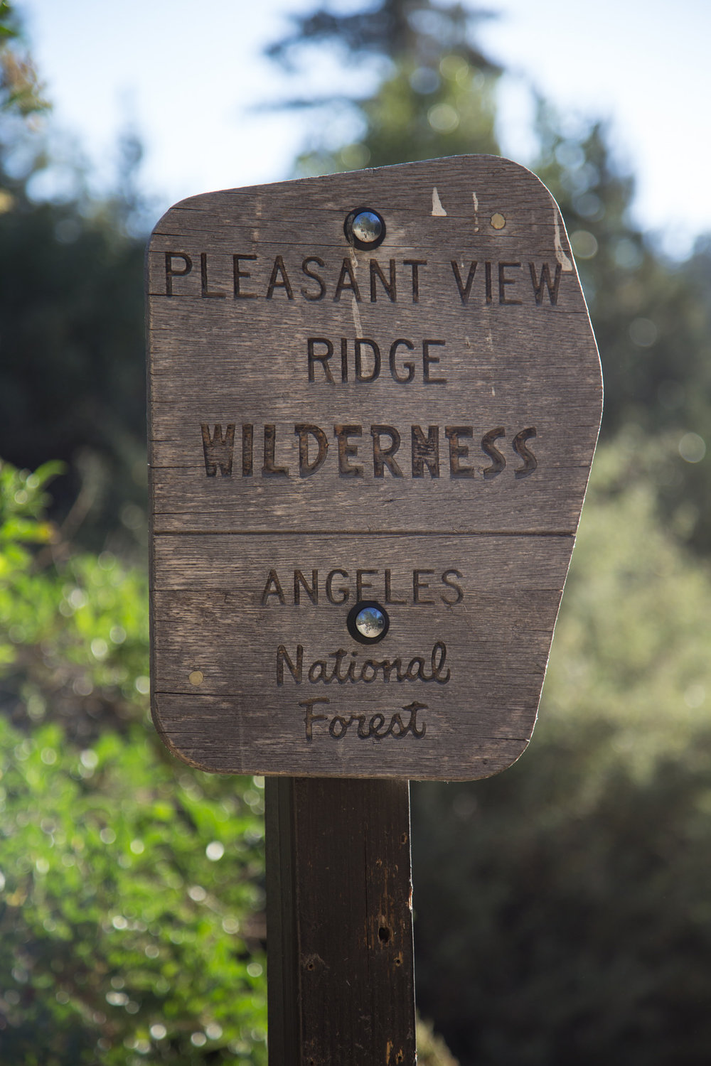 The sign for Pleasant View Ridge Wilderness at the beginning of Burkhart trail at Buckhorn Campground.