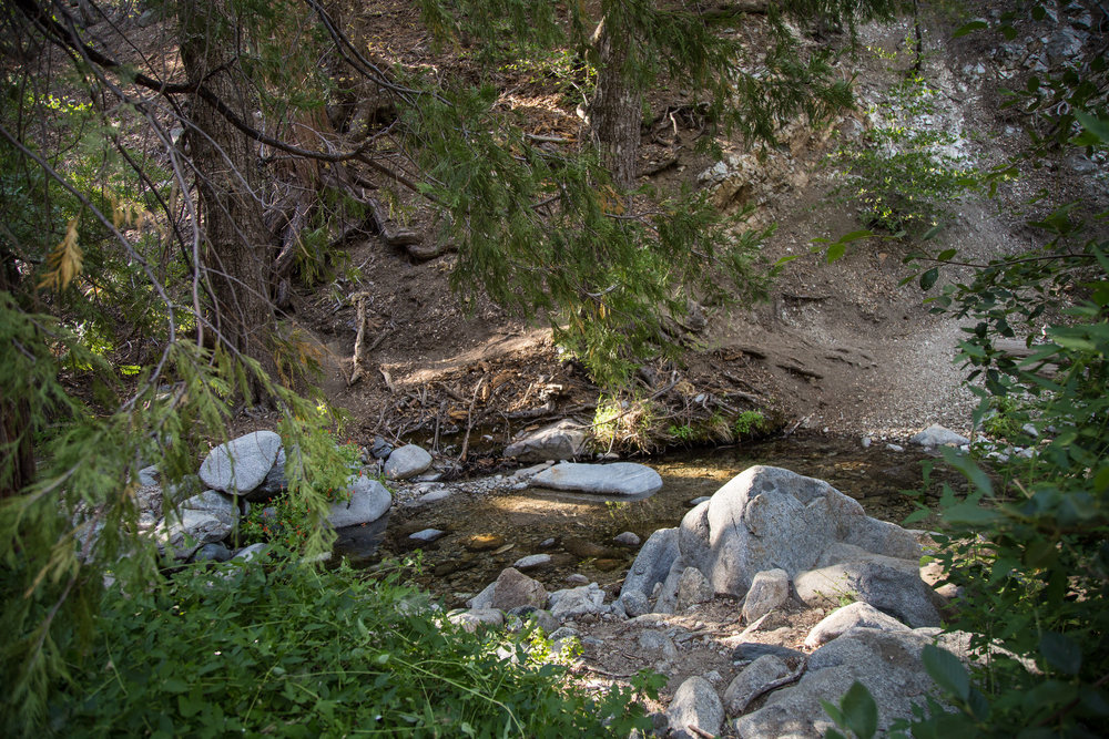 Another creek bed that we crossed and soon realized we'd missed the barely trickling falls.