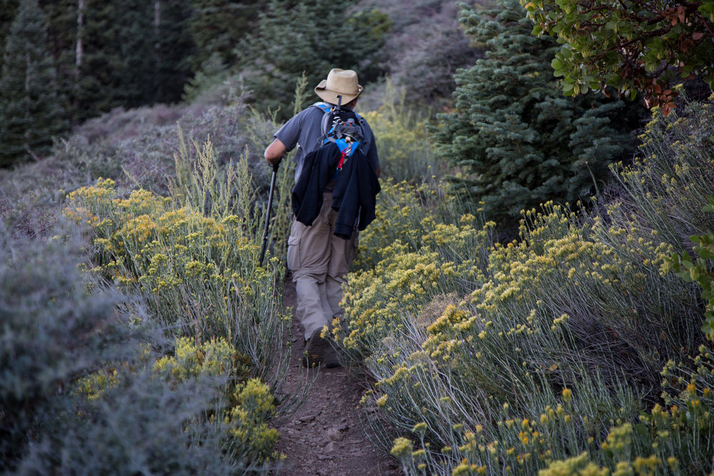 Photo of my husband walking through the rabbitbrush.