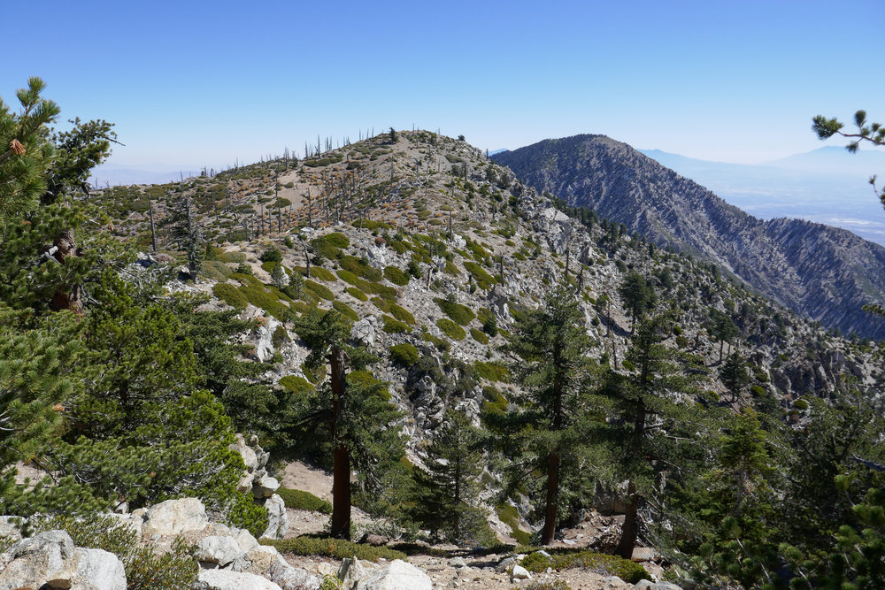 Big Horn and Cucamonga Peaks.
