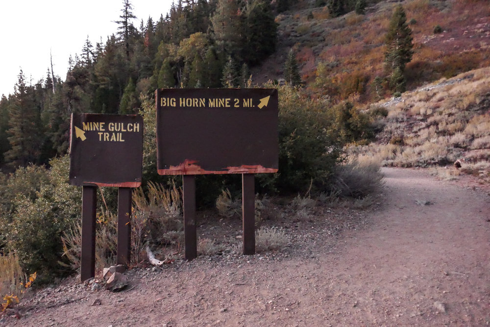 From Vincent Gap, follow the gated road up a ways and you will see these signs.  From this point you can make the trek to Big Horn Mine or take the Mine Gulch Trail which will take you to Vincent's Cabin.