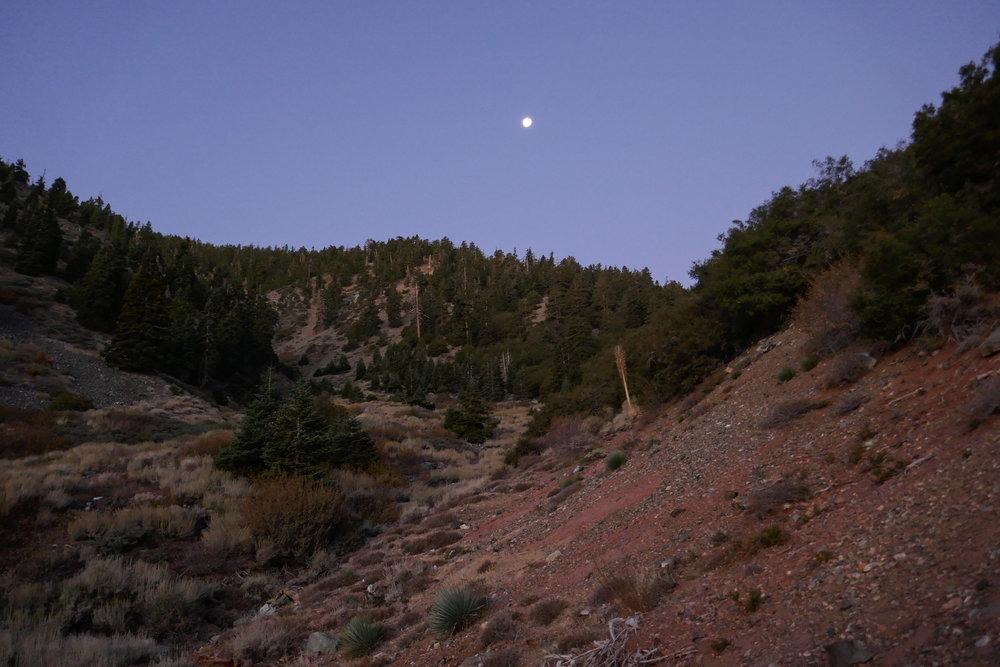 Moon over Mount Baden-Powell