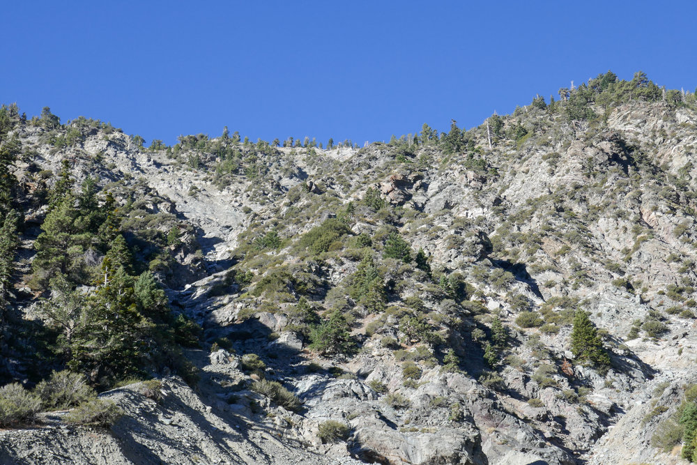 Last photo looking up at Mount Baden-Powell.