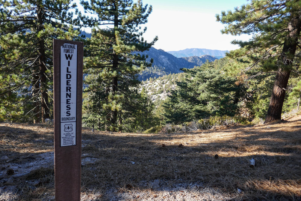 Sign for the San Gabriel Wilderness boundary.  You'll see several of these along the journey.