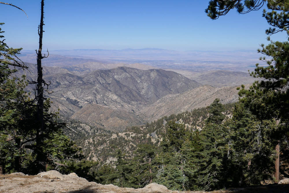 Views of the Mojave from the fire road on the way down.