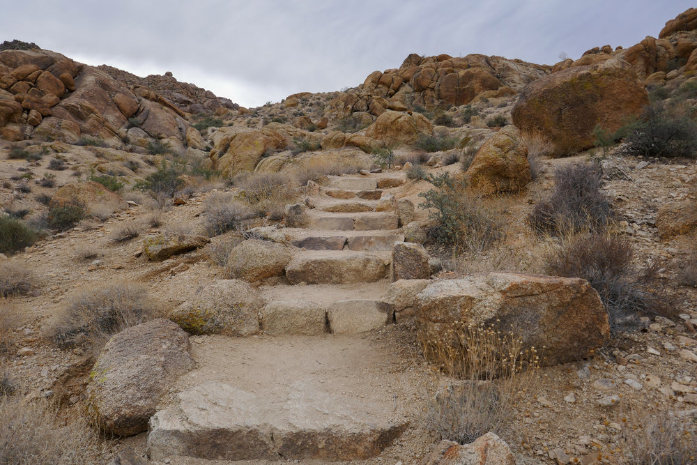 Sunday morning, heading up the trail to Fortynine Palms Oasis.  First time I've ever been on trails that have steps built into them.