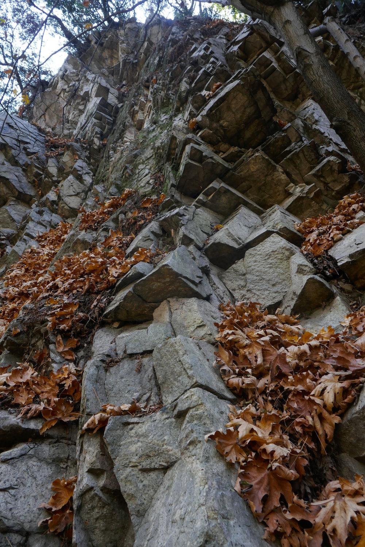 Looking up at the canyon wall.