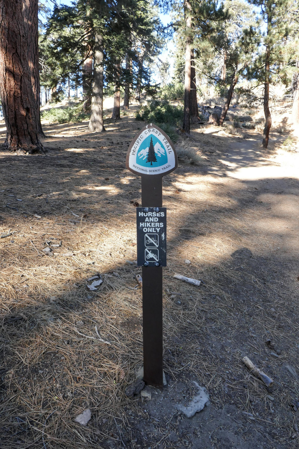Sign for the Pacific Crest Trail.