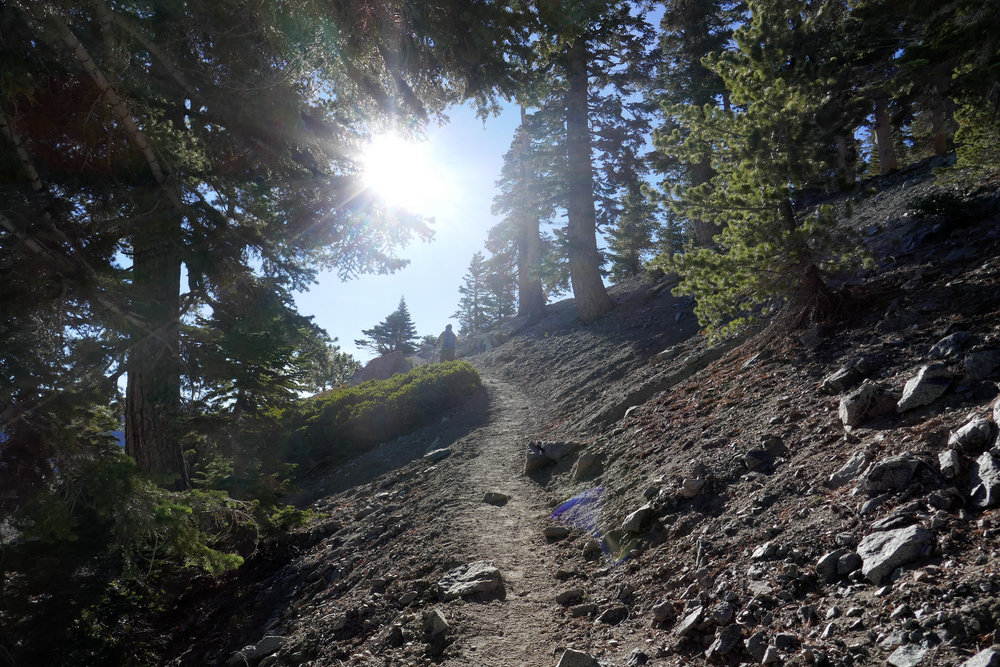 Sure the hike to the Ski Hut is tough, but for me, as soon as you climb up out of the bowl and start hitting the switchbacks, this is where the hike gets real!