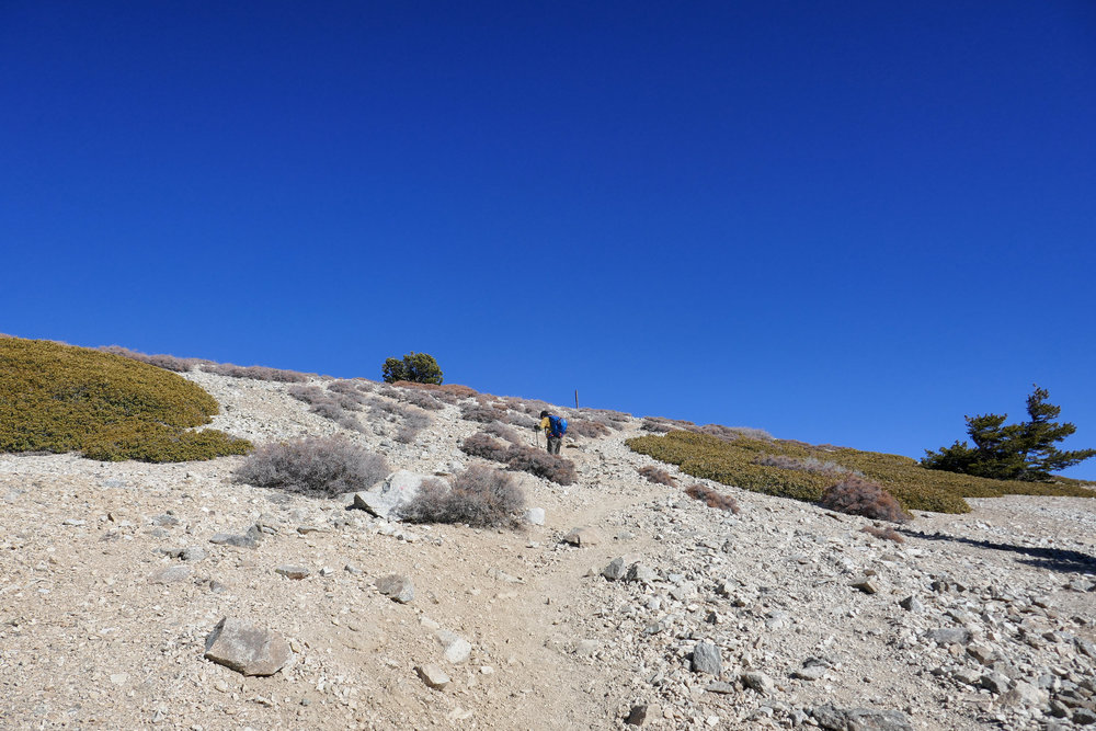 That's my husband way up ahead and that tiny stick to his right is the last mile marker just before you reach the top.