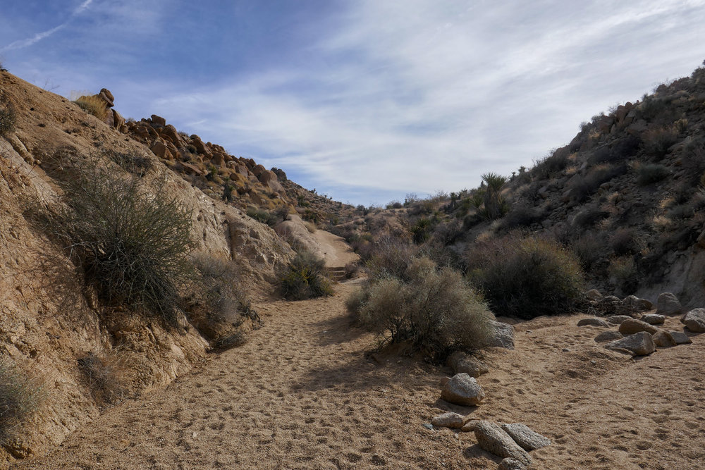 One of the many washes you'll pass through on the trail.