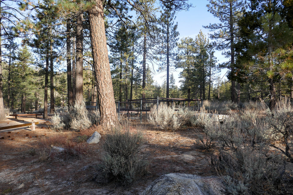 Horse Flats Campground.  It's very pretty here with hitching posts and corrals for your horse if you ride in.  The surrounding area is beautiful with a meadow of pines.