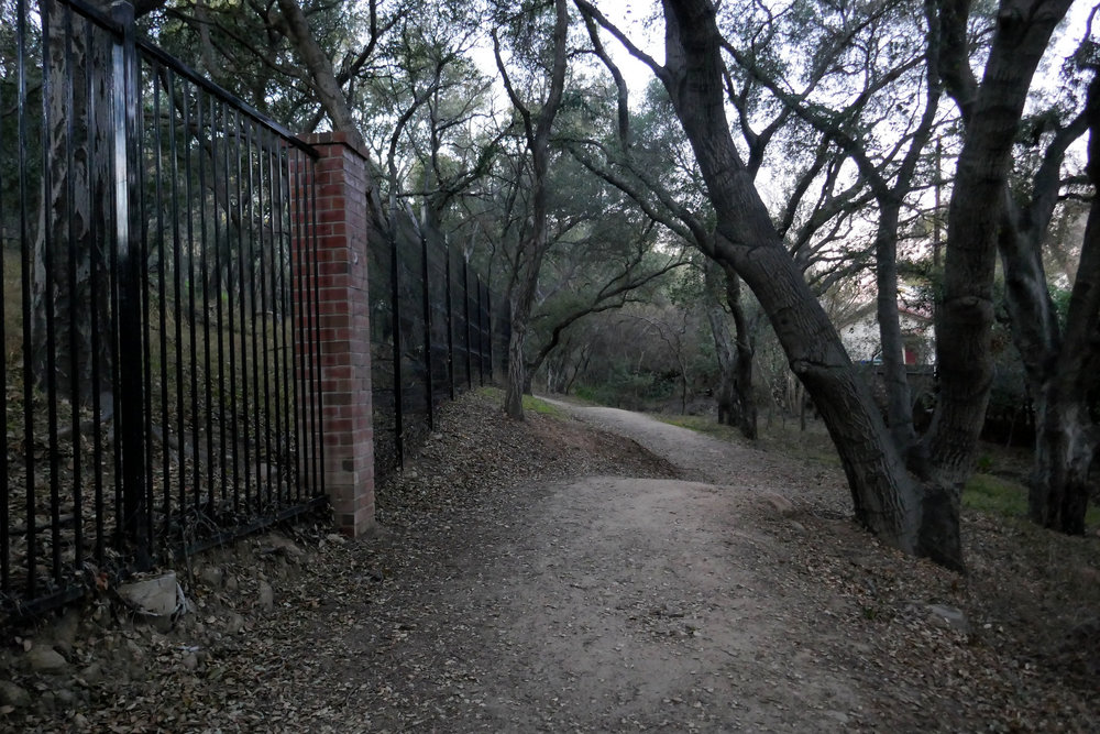 Following the fence along the edges of Descanso Gardens through some very pretty oaks.