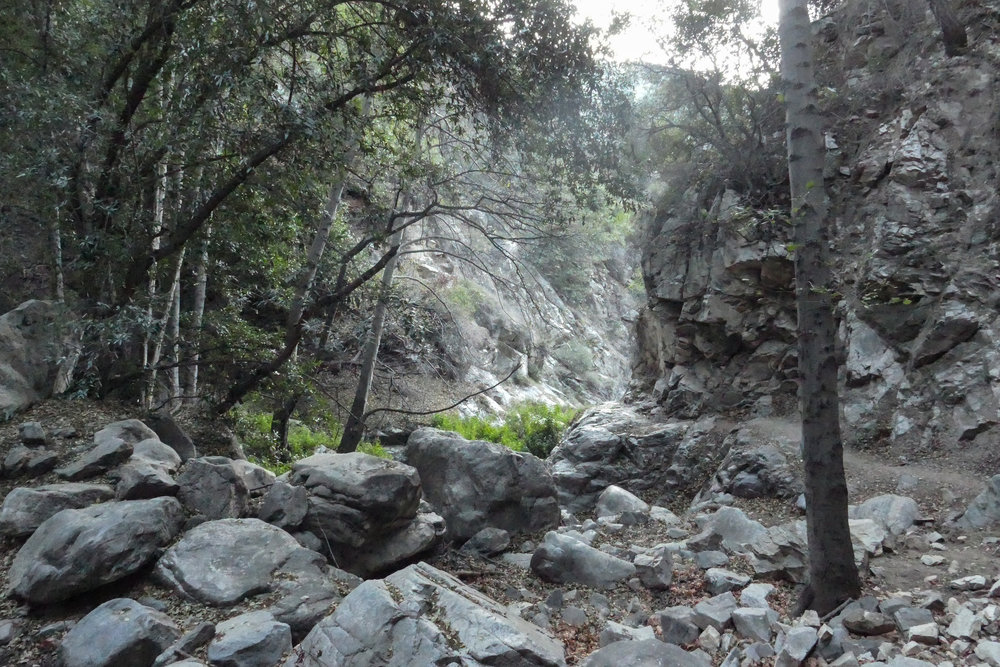 We started our hike with headlamps in the dark, so I didn't start taking photos until the sun started to come up.  This is the Lower Gabrielino Trail that goes up over Sturtevant Falls.