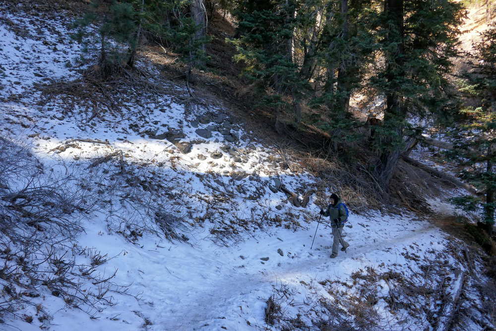 My husband hiking across the trail.