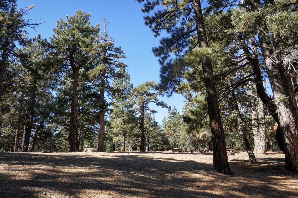 Blue Ridge Campground.