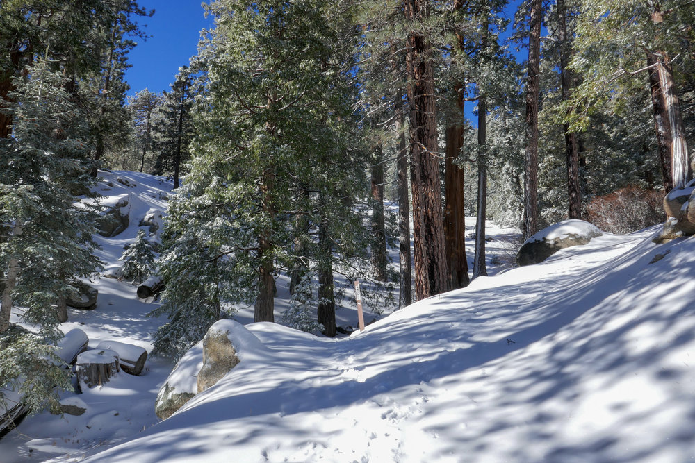 The Waterman Mountain trailhead looks a little different in the snow.  :)