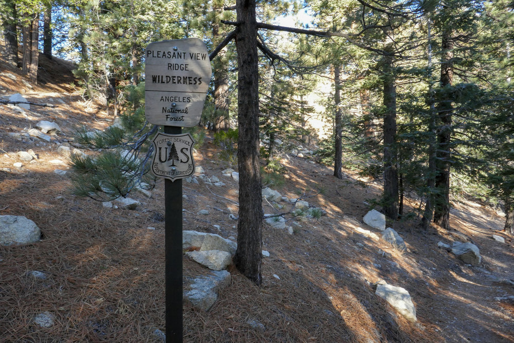 Getting on the Pacific Crest Trail at Cloudburst Summit.