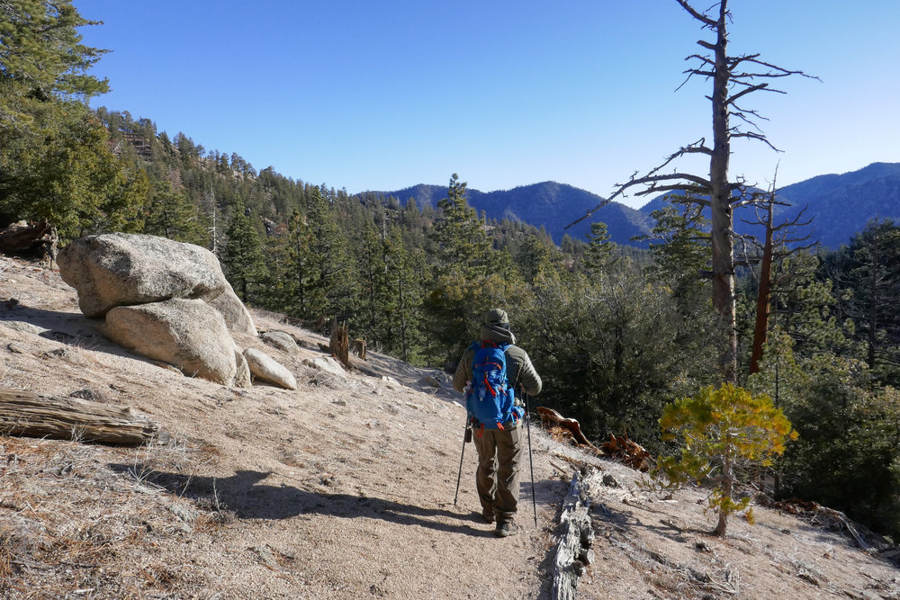 Heading into the Pleasant View Ridge Wilderness. There are some really beautiful views of the surrounding mountains.