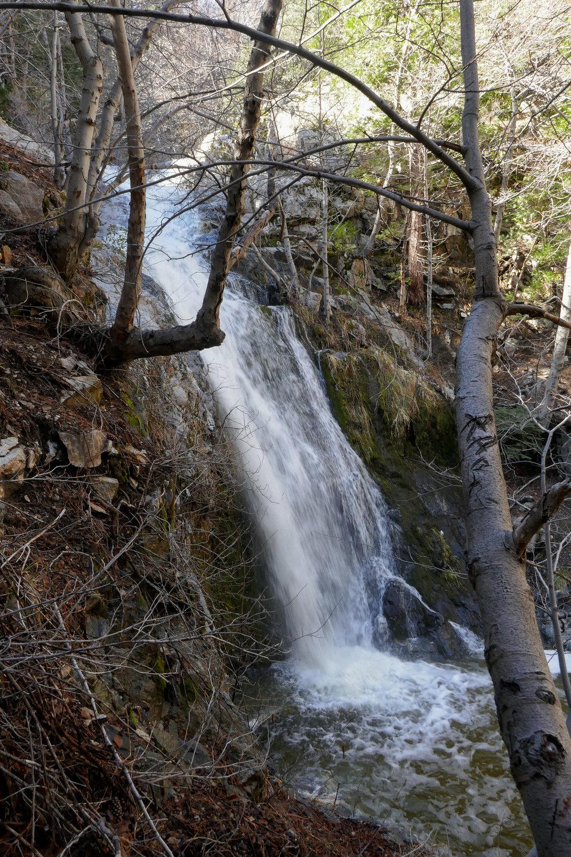 Beautiful Cooper Canyon Falls.