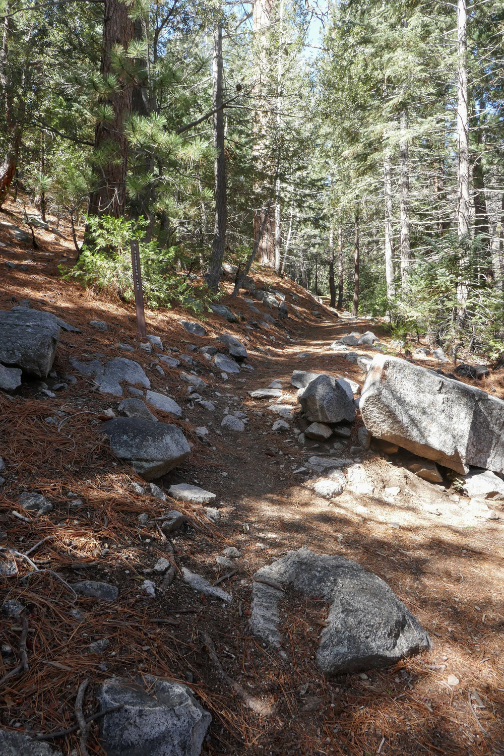 This is the junction where the Burkhart Trail meets the PCT. The Burkhart Trail back to Burkhart Campground is a really pretty trail as well.