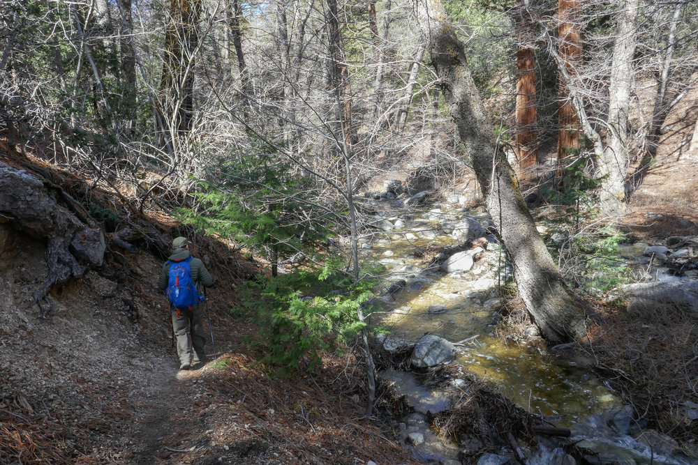 Following the trail along the creek.