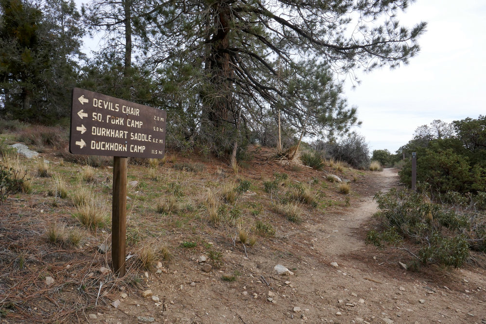 A little less then a mile in, you'll reach the split for the Burkhart Trail. You can also get to the Devil's Chair from here. That is a lovely hike too. If you haven't done it, I'd highly recommend it.