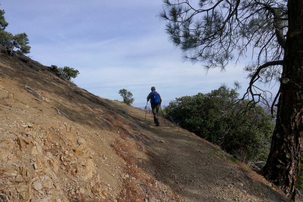 Now the trail goes up and you'll get some nice views of the punchbowl and the mojave.