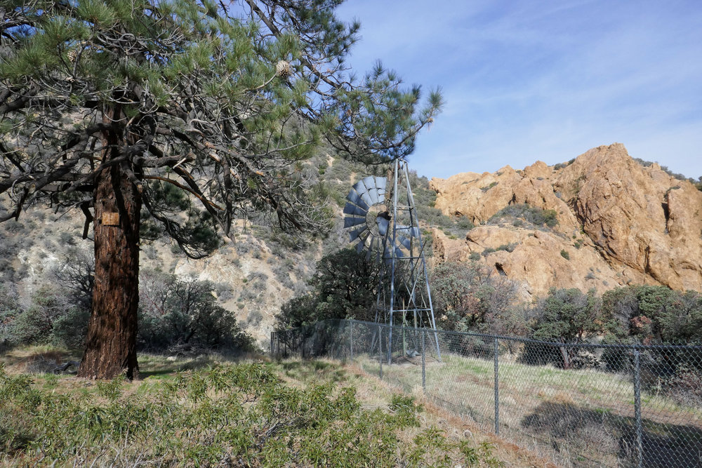 The trail drops down steeply and reaches Cruthers Creek just past this junction with the windmill.