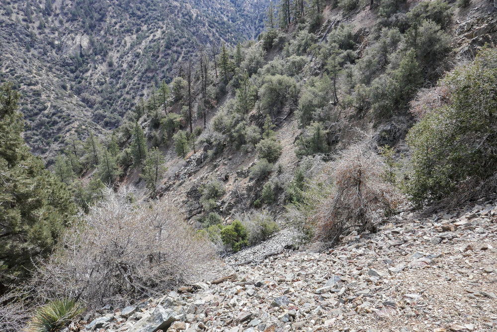 The trail became very narrow in sections. We had to stay focused. This is the view looking down the steep drop into the canyon.