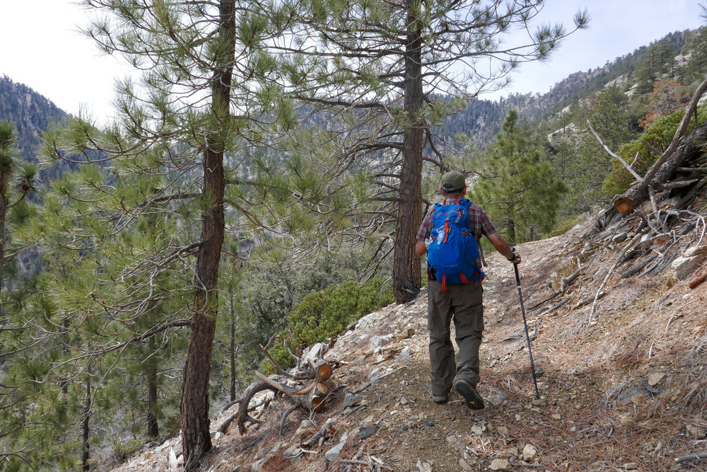 Now we started to see more pine trees as we hit the higher elevation. The breeze was really nice too.