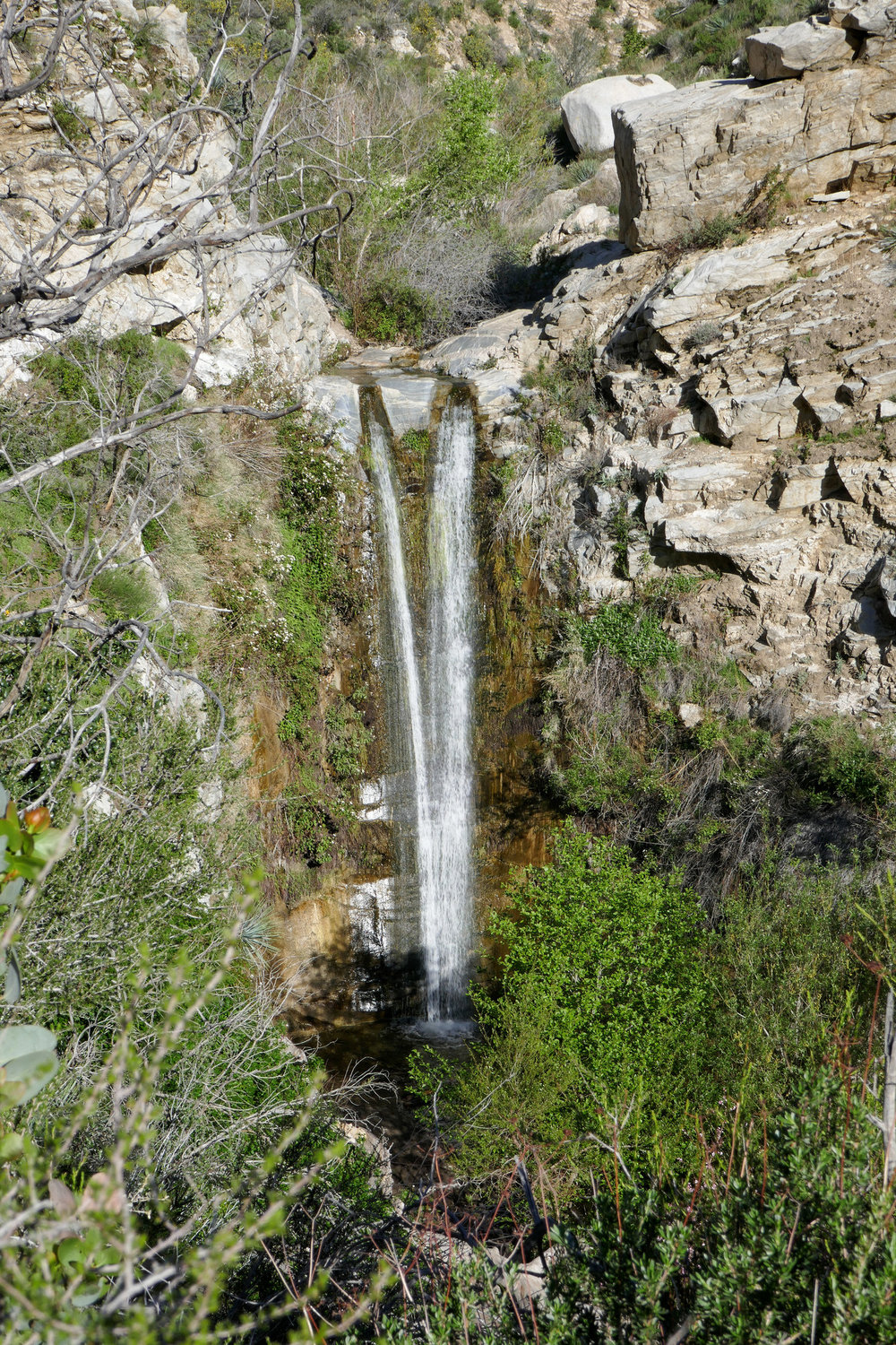 There are great views from here too, but if you continue on the path you'll find a rope tied to a tree and you can scramble down about 10 to 15 feet. From there just follow the path and you'll be at the base of the falls. It's pretty easy as long as you have some level of fitness.