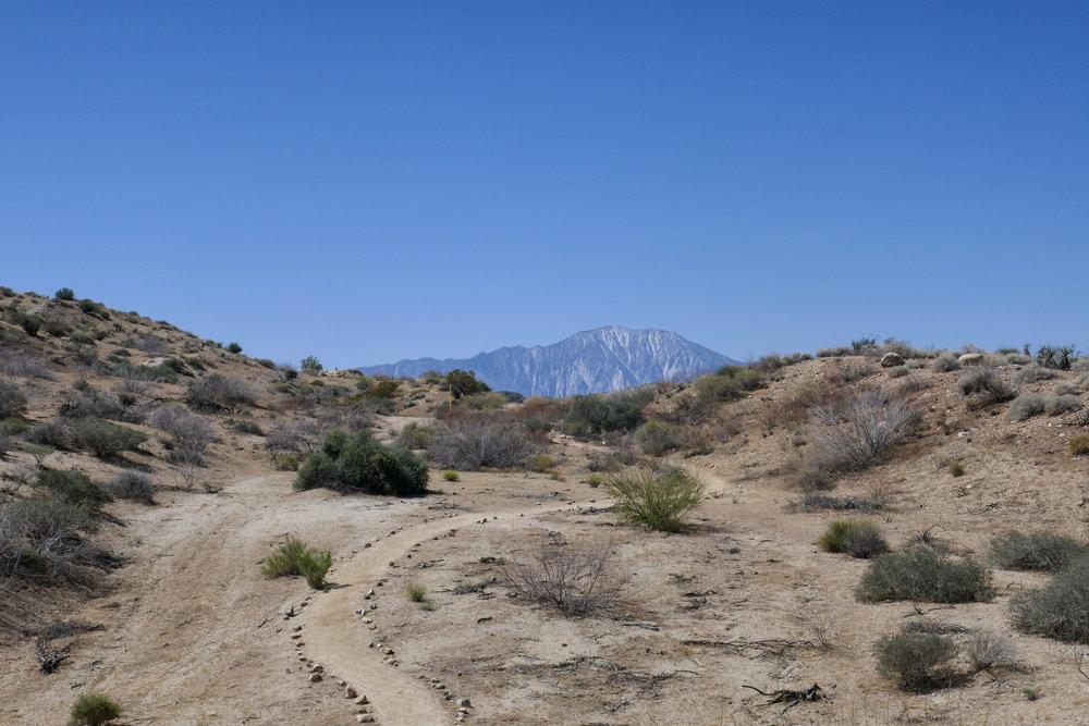 A view of Mount San Jacinto.