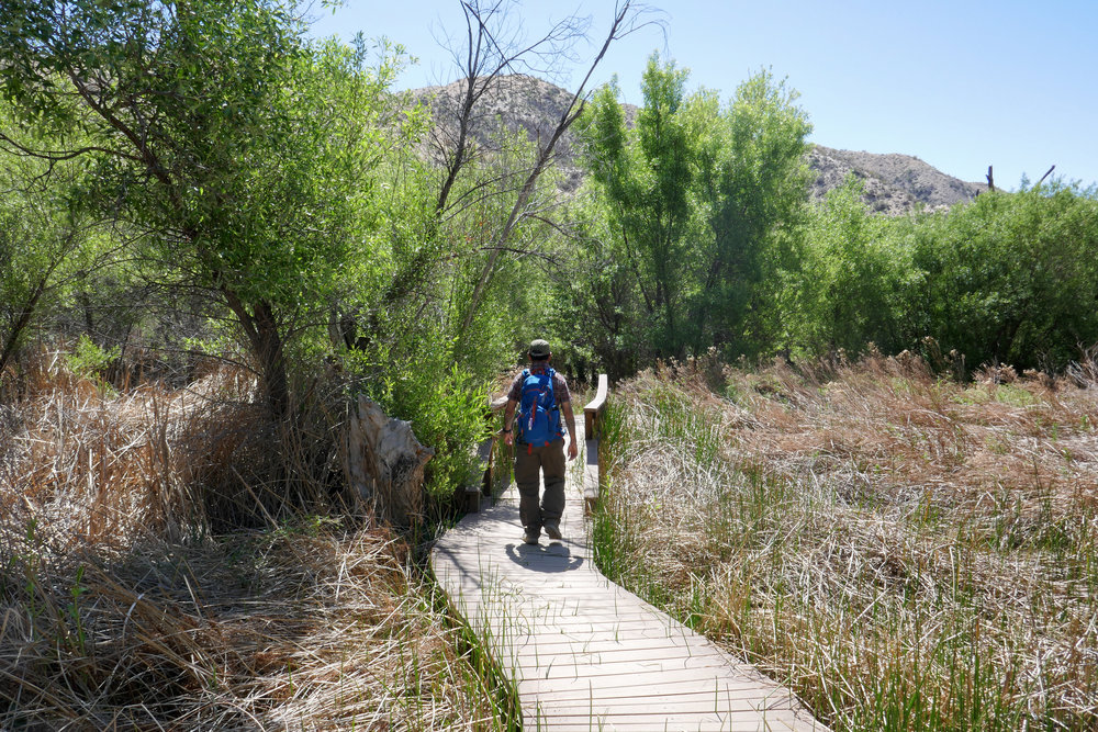 We hiked along the Mesquite Trail for a short time.
