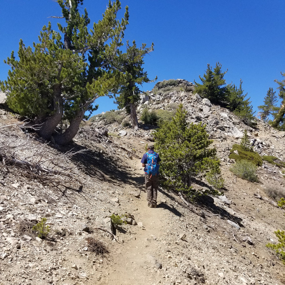 My husband looking up at Mount Burnham. Since it was along the way, we decided to go up.
