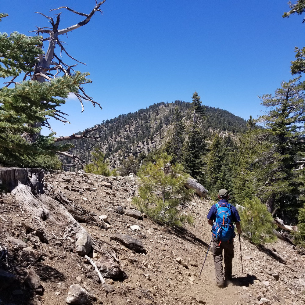 After descending Mount Burnham, we headed back down and on to Throop Peak which is directly ahead in this photo.